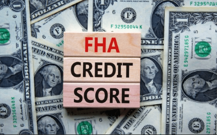 local-records-office-credit-score-fha-loan-buy-house (1)